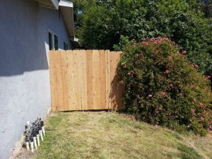 New Side Fence Install